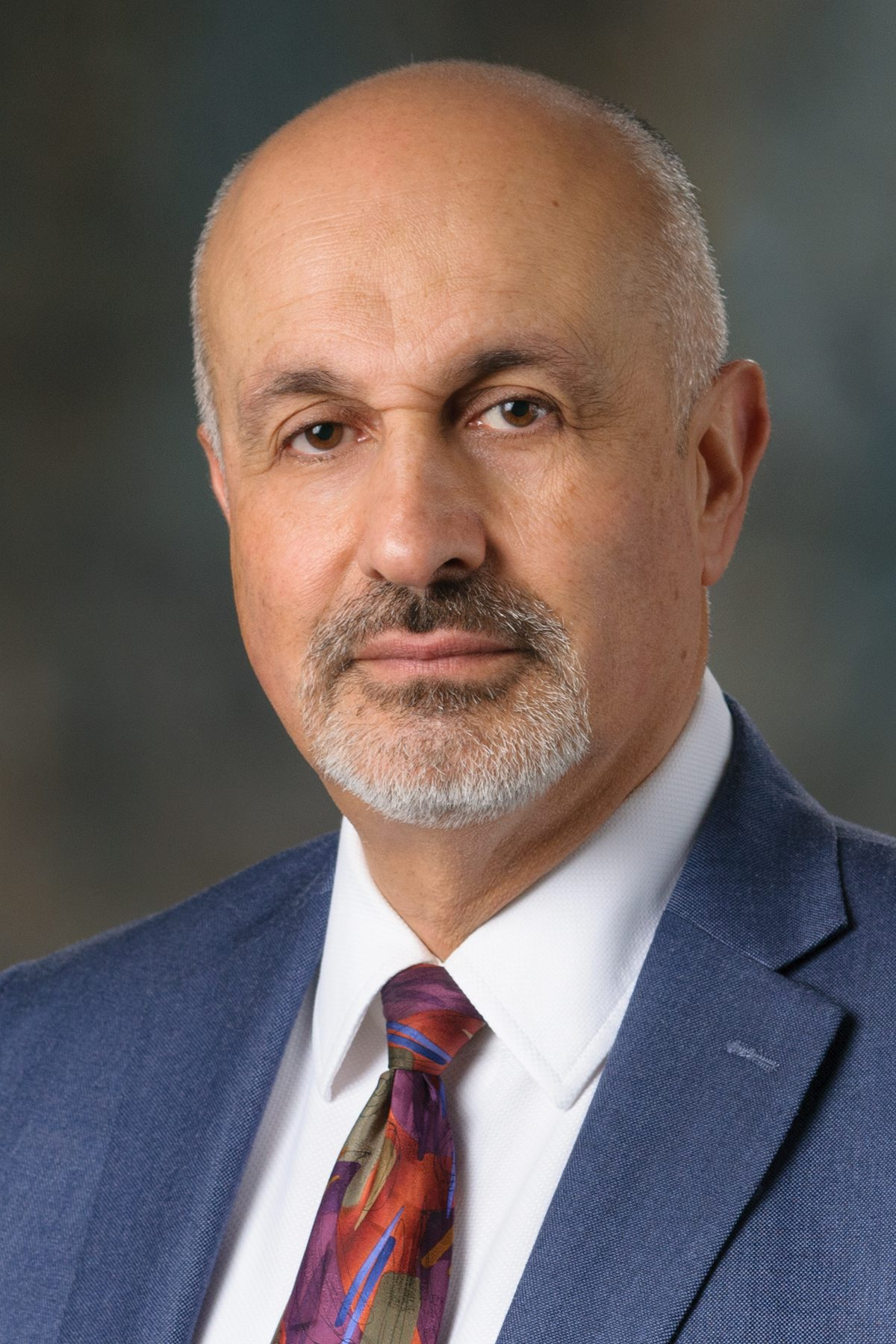 Mohammad R. Salehpour Image