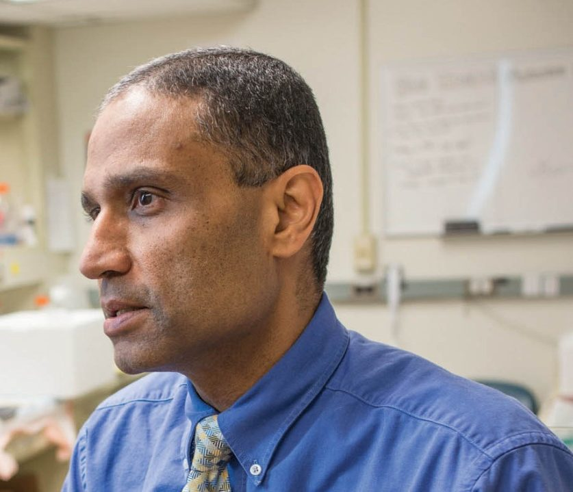 Anil Sood, M.D., is a professor of gynecologic oncology and co-director of the Ovarian Cancer Moon